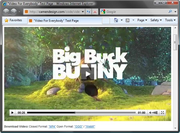 Screenshot of Internet Explorer 8 playing video using Adobe Flash